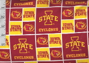 Iowa State shirt by Tacky Tux